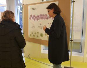 Unsere Förderkoordinatorin Frau Jacobs präsentiert das Förderkonzept der Grundschule Marienthal.